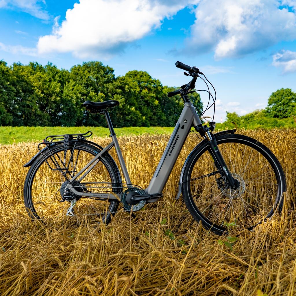 rower elektryczny Unibike Optima w terenie