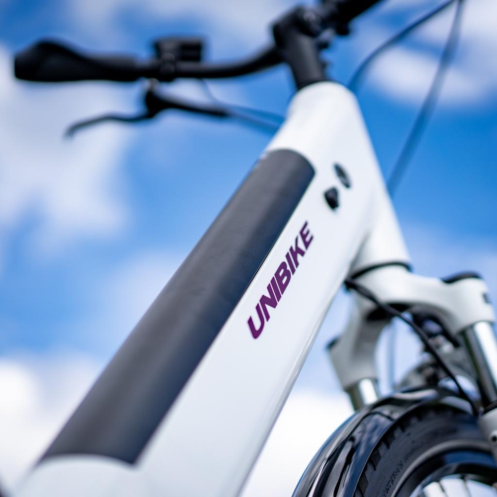 damski rower elektryczny Unibike Optima